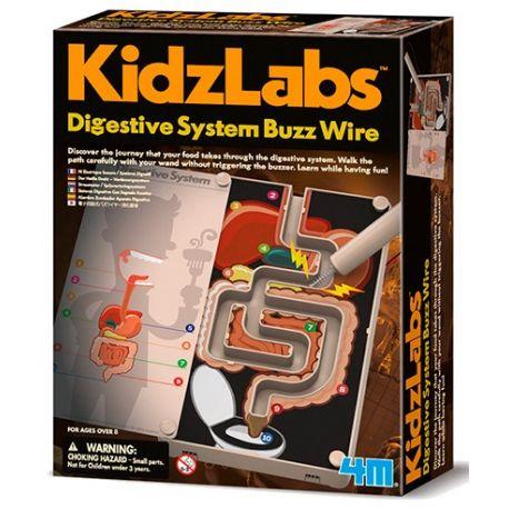 Kidzlabs: stresstester spijsverteringssysteem