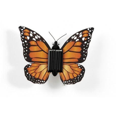 Bewegende vlinder